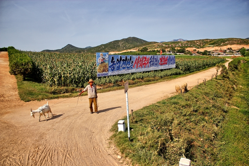 Crossroads in Rural North Korea